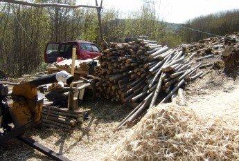 a woodman's camp