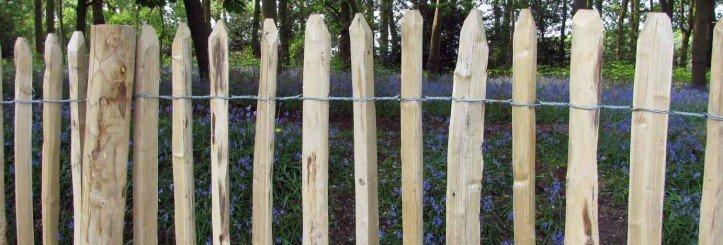 3-wire chestnut fencing
