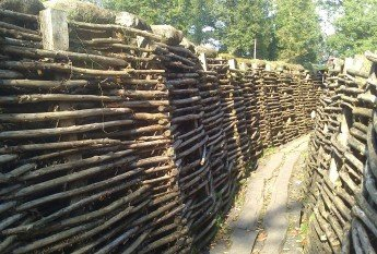 chestnut rods in trenches